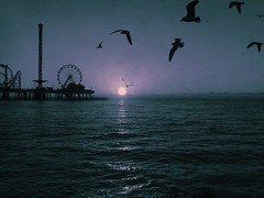 {galveston} : foggy mood (ktrap) Tags: seagulls galveston beach fog sunrise pier texas amusementpark rollercoaster gulfcoast galvestonislandhistoricpleasurepier uploaded:by=flickrmobile flickriosapp:filter=nofilter