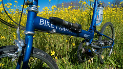 Healdsburg Mustard Field (What Photos Look Like) Tags: california leica flowers bike bicycle lumix sonoma wideangle panasonic bayarea mustard sonomacounty bjorke 169 healdsburg schwalbe bikefriday photorantcom kevinbjorke 2013 botzillacom lx3 westsonomacounty dmclx3 23817mmequiv