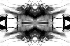 (Psychocandy136) Tags: bw white abstract black art nature ink photography photo nikon artist gradient nikond90