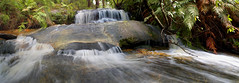 Panoramic Waterfall (Explored) (edwinemmerick) Tags: panorama nature creek photoshop river landscape waterfall nikon slow australia bluemountains nsw shutter hazelbrook edwin d60 cs3 stram emmerick