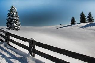 Fence and Snow in Caledon Ontario