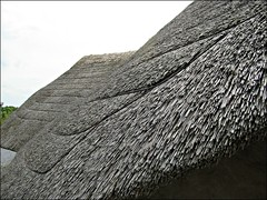 Roundhouse reconstruction, thatch detail (pefkosmad) Tags: wales copy reproduction reconstruction roundhouse anglesey llanddeusant llynnonmill lateprehistoric