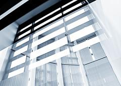 70/365 (bgottsab) Tags: blue windows blackandwhite monochrome reflections lookingup blinds