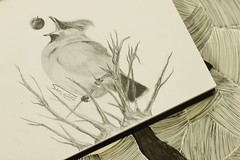 Bird (Sama0s) Tags: bird art pencil sketch drawing doodle artists doodles drawn
