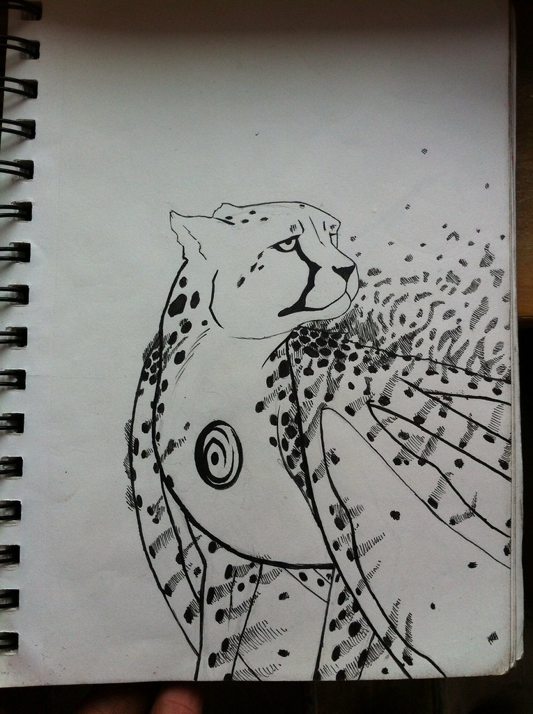 Cheetah drawings with color - photo#41