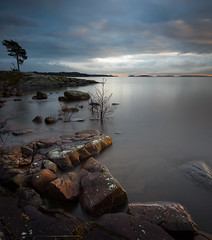 Lake Vänern from Bergviksudde II (- David Olsson -) Tags: longexposure november lake seascape tree nature water landscape nikon rocks sweden outdoor stones cliffs karlstad le fx vänern 2012 värmland 1635 ndfilter d600 1635mm lakescape bergvik smoothwater minitree 2exposures manualblend flickroid manuallyblended davidolsson nd500 lightcraftworkshop 1635vr bergviksudde