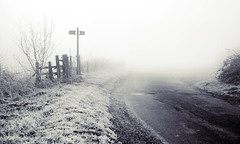 Which way will you go? (Explored) (Pixelglo Photography) Tags: blackandwhite bw white black fog blackwhite path foggy frosty frostymorning countryroad foggymorning forkintheroad morningfrost foggycountryside