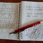"Notebook contents <a style=""margin-left:10px; font-size:0.8em;"" href=""http://www.flickr.com/photos/59134591@N00/8587725639/"" target=""_blank"">@flickr</a>"