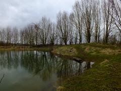 Millennium Pond (William_H) Tags: pond millennium
