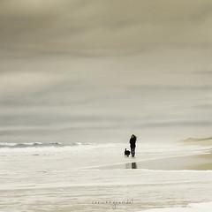 Equilibrio (Misheta) Tags: canon mar agua labrador chica playa arena cielo misha tormenta invierno soledad amistad espuma equilibrio eos7d misheta