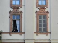 just checking (Hayashina) Tags: torino turin italy window hww