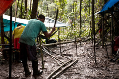 Guilherme.Gnipper-0311 (guilherme gnipper) Tags: picodaneblina yaripo yanomami expedio expedition cume montanha mountain wild rainforest amazonas amazonia amazon brazil indigenous indigena people