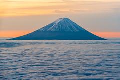 Fuji morning view from Mt.Kokushi (shinichiro*) Tags:    jp 20151113ds19861 2016 crazyshin nikond4s afsnikkor70200mmf28ged fuji seaofcloud    yamanashi japan november autumn
