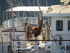 IMG_7973 Tenacious, The Helm. (Boat bloke) Tags: sydney australia tallship square rigger ship timber boat wood wooden sea ocean darling harbour harbor tenacious canon sx50hs