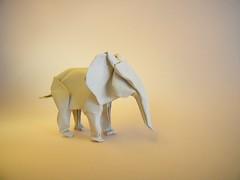 White Elephant  Sipho Mabona (Rui.Roda) Tags: origami papiroflexia papierfalten elefante olifant white elephant sipho mabona