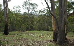 L241 Florabunda Lane, Nethercote NSW