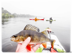 Kayak fishing loch Lomond (Nicolas Valentin) Tags: lochlomond lomond loch landscape light lake scotland scenery peche perch kayakfishing kayak kayakscotland kayaking kayakfishingscotland