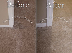 32 Carpet patch do to dog pet damage Austin Round Rock Cedar Park Manor Bee Cave San Marcos (Carpet Repair) Tags: austincarpetrepair cedarparkcarpetrepair roundrockcarpetrepair pflugervillecarpetrepair sanmarcoscarpetrepair westlakehillscarpetrepair wimberleycarpetrepair suncitycarpetrepair driftwoodcarpetrepair georgetowncarpetrepair drippingspringscarpetrepair kylecarpetrepair laketraviscarpetrepair lakewaycarpetrepair leandercarpetrepair manorcarpetrepair onioncreekcarpetrepair bartoncreekcarpetrepair budacarpetrepair carpetrepair repaircarpeting carpetrepaircost carpetrepairservice carpetrepaircompanies professionalcarpetrepair carpetdamagerepair carpetrepairspecialist repairingcarpetdamage cancarpetberepaired canyourepaircarpet carpetrepairaustintx fixingcarpet carpetfixing fixcarpet carpetpatching patchingcarpet carpetpatch patchcarpet carpetpatches patchacarpet carpetpatchingcost carpetpatchingservice carpetrepairpatch repaircarpets carpetpatchrepair canyoupatchcarpet repairingcarpetpatch carpet patching patch patchwork repair austin kyle lakeway buda cedarpark roundrock sanmarcos beecave snag tears tear torn fraying frayed unraveling hole dog cat petdamage carpetpetdamage carpetrepairpetdamageaustin carpetrepairpetdamage petdamagecarpetrepair