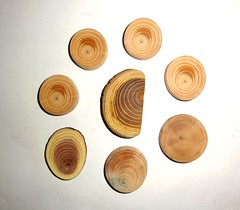 Jewelry supplies making findings. Natural wood for pendants, earrings, necklaces, rings, bracelets, brooches, charms, keychains, magnets ... (john bonham2) Tags: jewelrysupplies jewelryfindings woodslices wooddiscs rusticwedding natural wood slices wooden discs jewelry supplies supply findings making parts pendants earrings brooches rings keyrings keychains weddings naturalwood