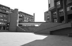 Complesso Monte Amiata,Galleratese,Milano (Irene Guglielminetti) Tags: bw city urban italy irene guglielminetti
