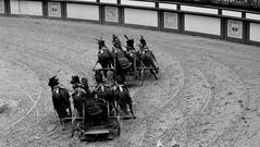 Puy du Fou - Colosseum show (tokyobogue) Tags: france puydufou park history show holiday vendee nikon nikond7100 d7100 blackandwhite blackwhite monochrome colosseum chariots romans