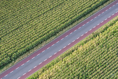 In the middle of the street (dejongbram) Tags: road corn mais lines nikon holland agriculture landscape landbouw ngc