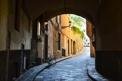 (ola_alexeeva) Tags: firenze florence italy   exploring    architecture italian  perspective street bike cozy
