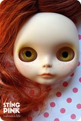 21.Custom Neo Blythe -Prairie Posie