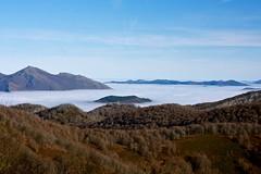 Mendaur (joxelu.) Tags: paisaje niebla navarra