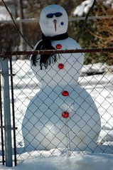 One cool snowman then but now a snowball. (kennethkonica) Tags: winter red usa sunlight white snow sunglasses america scarf snowman nikon midwest shadows indianapolis indiana nikond70s carrot firstsnow hoosiers