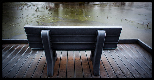Frozen Pond Bench