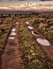On the Ridge - After the Rain (Jeff Clow) Tags: weather landscape grandtetonnationalpark jacksonholewyoming moranwyoming buffaloforkridge dirtcheapphototours tpslandscape