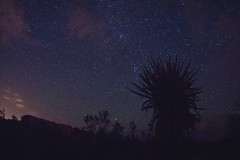 joshua tree time lapse (eddyizm) Tags: california stars nationalpark timelapse video desert sony joshuatree august astrophotography alpha campground 2012 startrails jtree joshuatreenationalpark a700 jumborocks jtnp eddyizm thedarknight eduardocervantes persiodmeteorshower