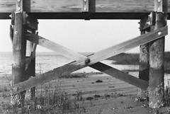 X (csteinmetz1) Tags: wood old blackandwhite bw film beach analog vintage pier dock nikon fuji x retro explore 35mmfilm fujifilm analogphotography 50mmf18 fujifilmsuperia nikonn8008