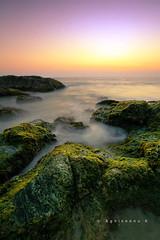 Sunset at Vizhinjam (AgniMax) Tags: longexposure travel sunset beach weeds rocks kerala agni vizhinjam agnimax