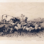 "<b>Un Troupeau</b><br/> Adolphe Martial-Potémont after Constant Troyon (Etching)(1876)<a href=""http://farm9.static.flickr.com/8229/8451333542_f15505292b_o.jpg"" title=""High res"">∝</a>"