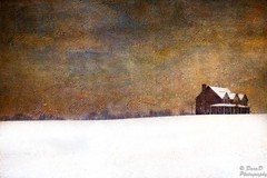 Winter Vista (DaraDPhotography) Tags: winter house snow field view farm textures vista ie textured tatot lenabemannatextures wwwdaradphotographycom pixeldustphotoart texture239 texture164 pdpasmokin pdpaagingbeautifully