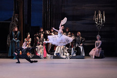 Your reaction: The Bolshoi's Swan Lake