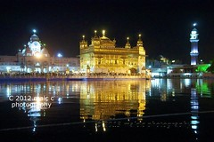 Golden Temple at night - Amritsar (Malc ) Tags: india night temple photo memorial photos stockphotos sikh gurdwara punjab bagh atnight amritsar sikhism goldentemple stockphotography davidcameron harmandirsahib thegoldentemple jallianwala sikhgurdwara darbarsahib photosof sikhtemple jallianwalabagh gururamdas  jallianwalabaghmemorial malcc  goldentempleatnight malcolmchapman malcolmpchapman amritsargoldentempleflickr goldentemplenightphotos