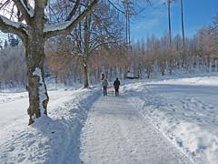 schluchsee_013_19022013_10'32 (eduard43) Tags: schnee winter snow ice germany deutschland hiking eis schwarzwald schluchsee wanderung breisgau stausee stblasien badenwrttemberg hochschwarzwald reservoirlake