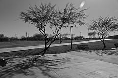 tempe 5783 (m.r. nelson) Tags: arizona urban bw usa southwest monochrome america blackwhite streetphotography az bn mrnelson temep markinaz sonya77 nelsonaz