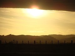 Golden sunset (Home Land & Sea) Tags: sunset newzealand sky fence golden hills nz napier pointshoot sonycybershot hawkesbay hff westshore explored dsch3 fencedfriday homelandsea
