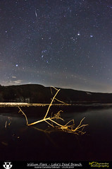 Iridium Flare - Lake's Dead Branch (Pyranha Photography | 300k views - THX) Tags: winter sky lake mountains tree water night canon stars dead photography eos austria march sterreich google long exposure flickr branch nacht g krnten carinthia astro pi ren orion flare plus istock 8mm walimex sterne langzeitbelichtung iridium spittal magnesit shutterstock millstatt pyranha twitter fotolia 2013 cullmann dbriach radenthein 500px 60d 525m pirker