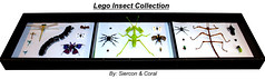 Lego Insect Collection (Panorama) (Siercon and Coral) Tags: butterfly bug insect spider lego moth bugs collection hornet millipede stickbug creepycrawly prayignmantis battlebugs