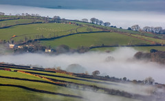 Agricultural mist (snowyturner) Tags: morning trees mist buildings landscape sheep farmland devon brent fields agriculture tor brentor coryton