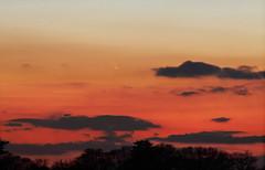 Comet C/2011 L4 Panstarrs (kappacygni) Tags: sunset night stars twilight dusk space astrophotography astronomy comet solarsystem panstarrs canon200mmf28l tumblr canon5dmkii astronomy4all cometpanstarrs astro:gmt=20130313t1900 astro:subject=cometpanstarrs