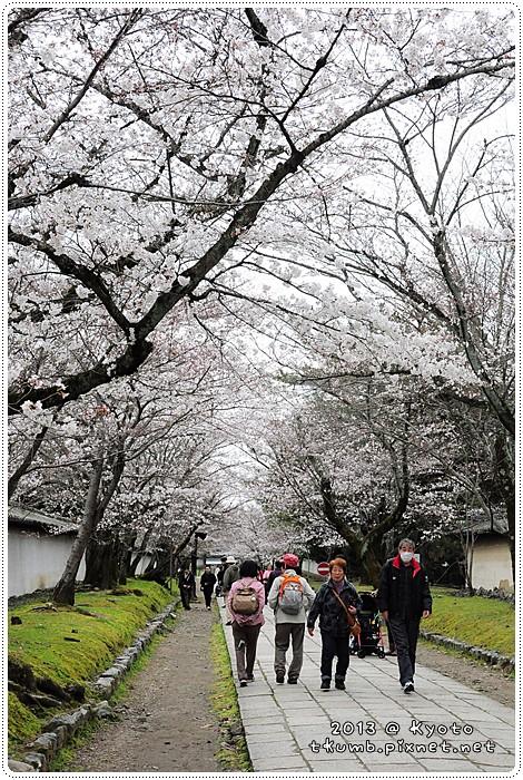 醍醐寺 (8).jpg