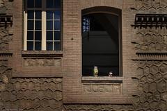 DAR_El vigilante y el curioso_DSC0035 (Damin Razzini) Tags: streetphotography fotografacallejera carrer personas people ventana window