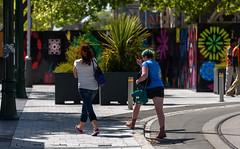 Long Strides (Jocey K) Tags: street trees newzealand christchurch people plants fence buildings artwork shadows tramlines cathdedralsq