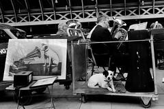 His Master's Voice (stevedexteruk) Tags: gwr brass band paddington dog jack russel his masters voice music train staitoin railway platform london uk 2016 gramaphone